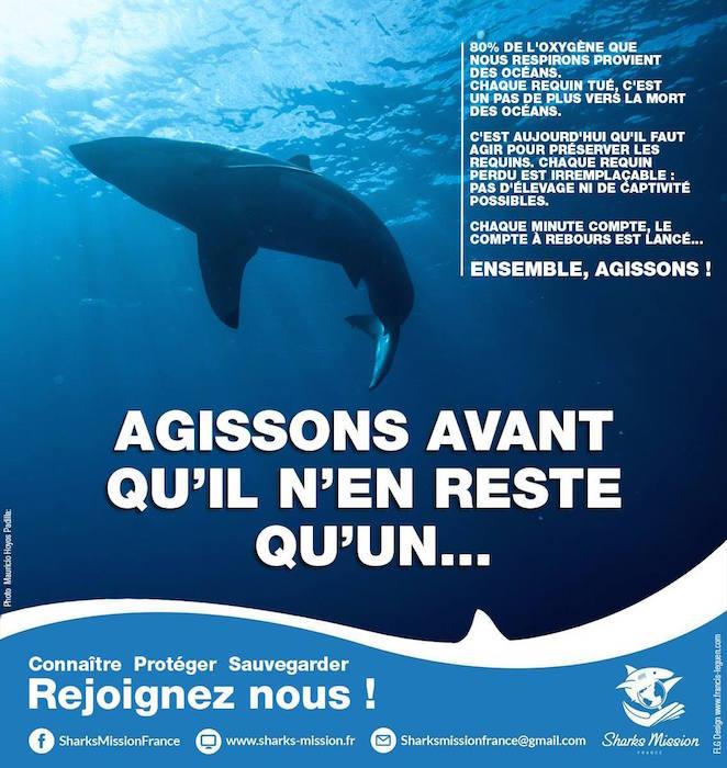 SHARKS MISSION FRANCE