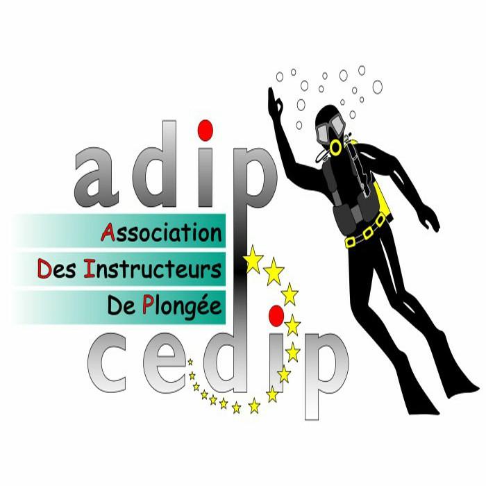 ADIP INTERNATIONAL