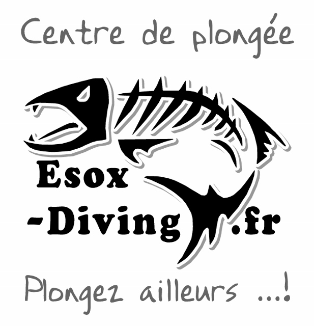 GROUPE POLY DIVE