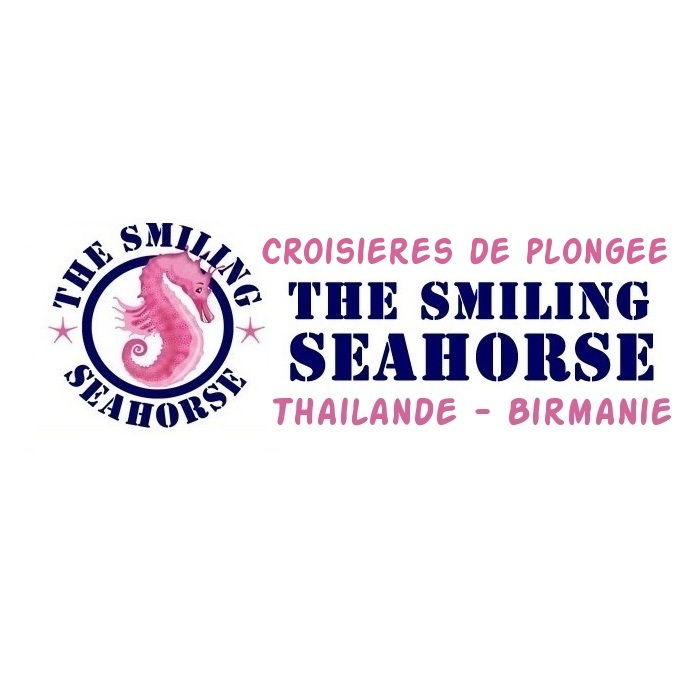 THE SMILING SEAHORSE