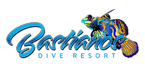 BASTIANOS DIVE RESORT