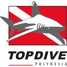 TOPDIVE