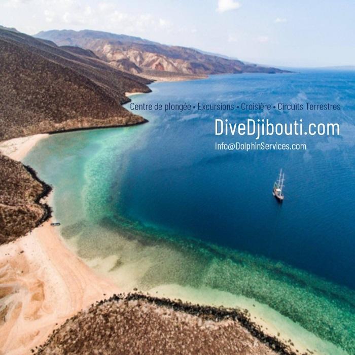 DOLPHIN EXCURSION DJIBOUTI
