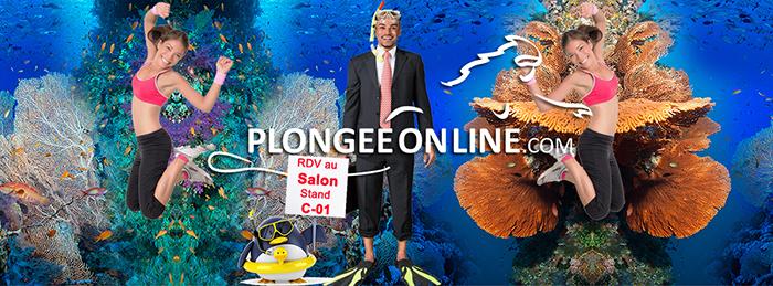 PLONGEE ON LINE
