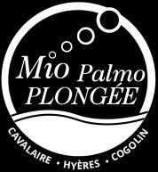 MIO PALMO