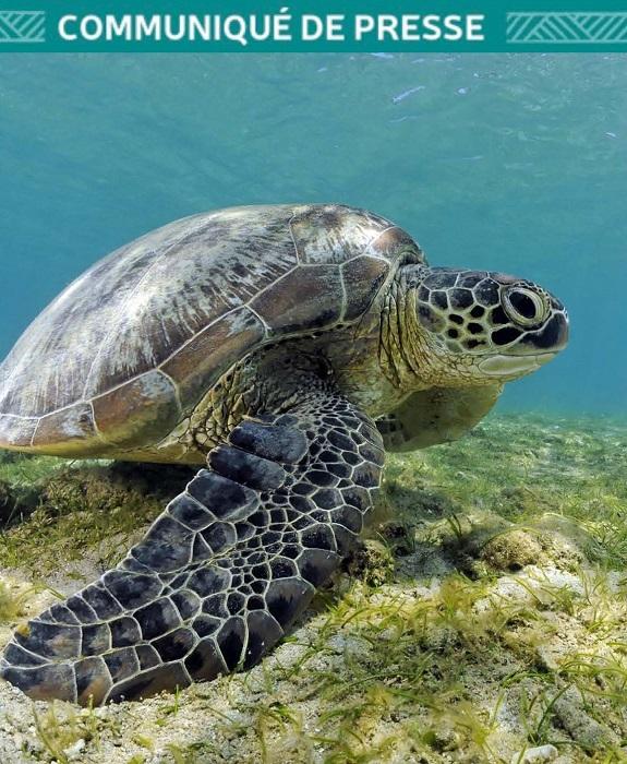 Communique : Nouvelle Caledonie Tourisme